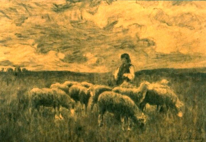 Cioban aromân